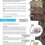02_Kompost_Illustriert_80x1200mm_V01